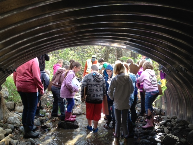 Watershed Restoration Culvert Unit with Royalton 4th grade